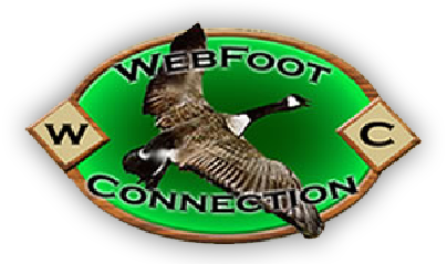 Roewe Outfitters Texas Huntingtexas Waterfowl Hunting Texas Hunting